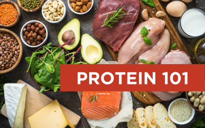 Protein 101