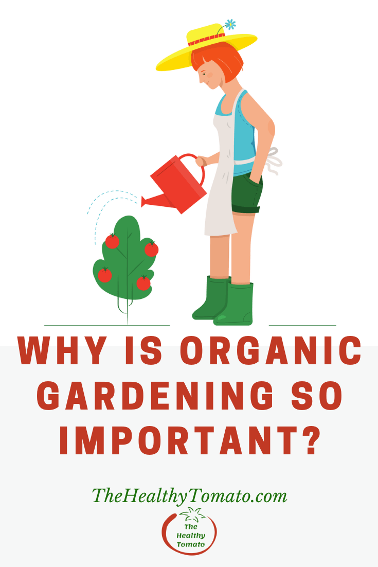 Why is Organic Gardening Important?
